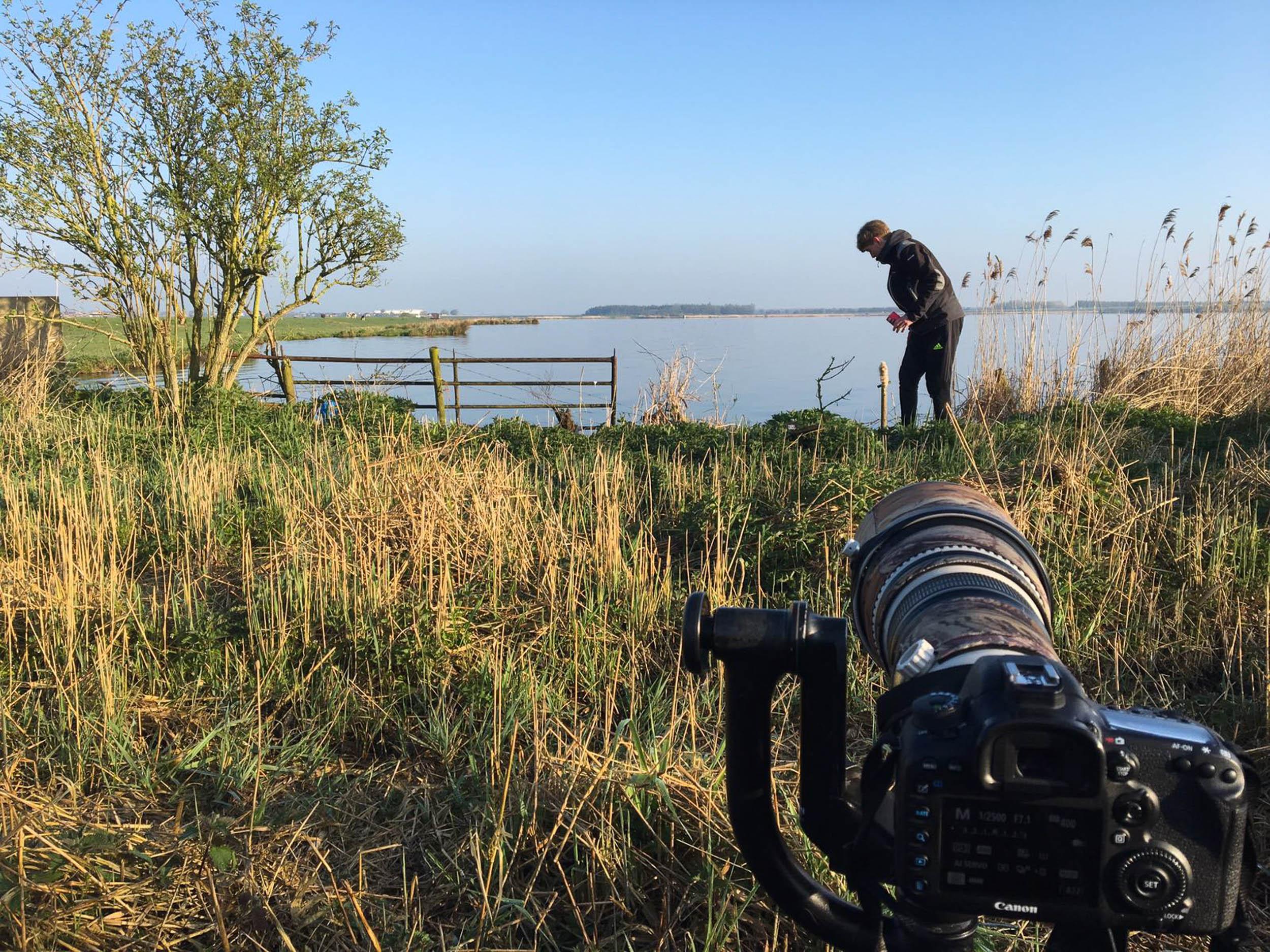 Preparing to photograph bluethroats
